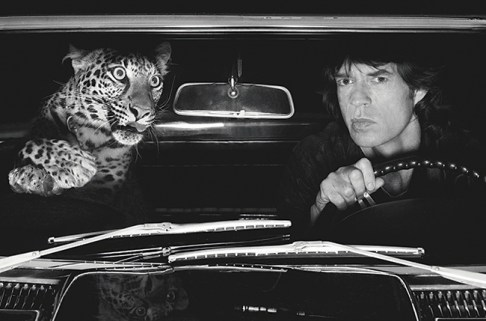 Rolling Stones  - Mick and cat