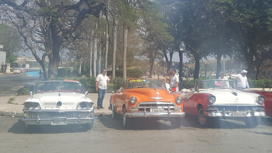 Old Cars ready for Tourists