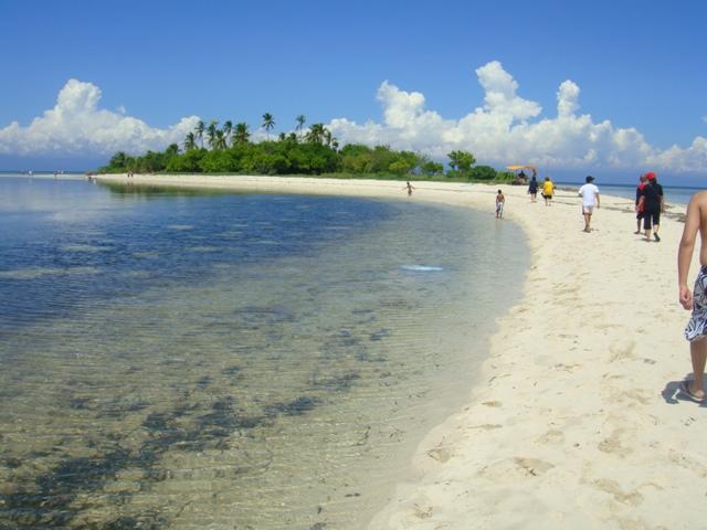 Bohol Island Tour