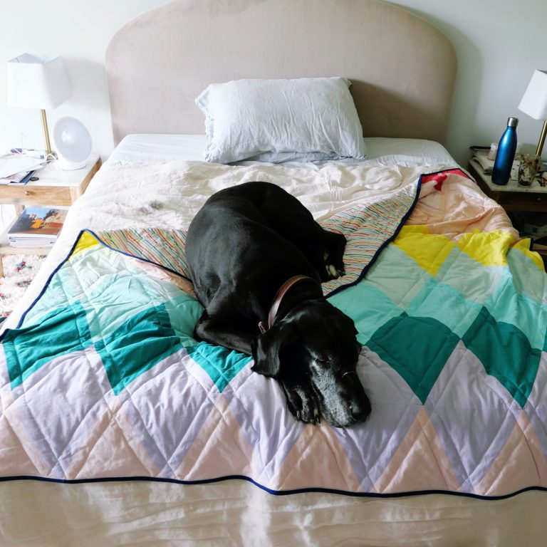 A picture of a big black dog on a colorful quilt, on a bed.