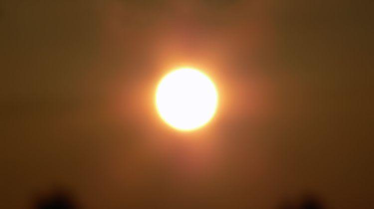 sun through heatwave
