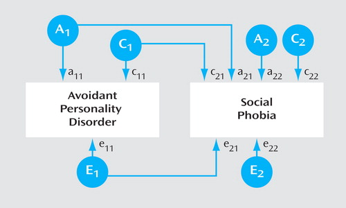The Relationship Between Avoidant Personality Disorder and