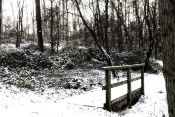 Snow-41-Edit