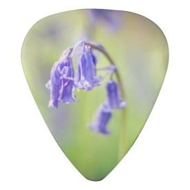 bluebell_guitar_picks_guitar_pick-r8e2b207c36c64d71b37853911cb32828_zvjzc_512
