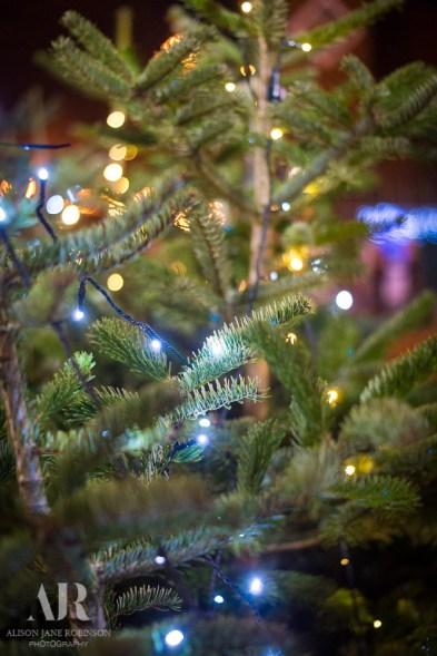lincoln-christmas-fair-215