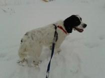AJ in the snow