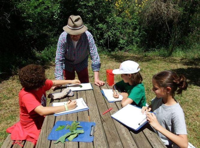 Activitats als parcs de Can Solei i Ca l'Arnús i del Torrent de la Font i del Turó de l'Enric de Badalona per aquest diumenge 9 de juny