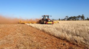 Demolishing a 20 bag oat stubble