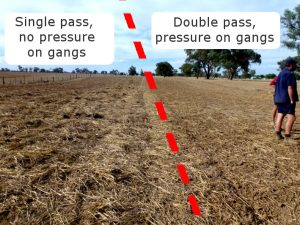 Create two different results in the same paddock