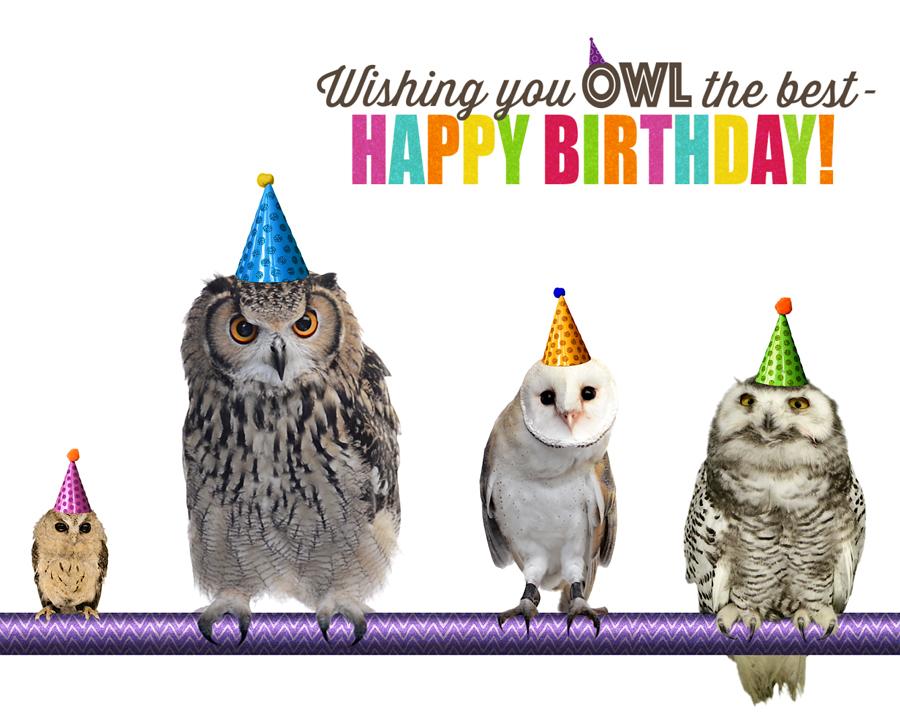 Owl The Best Ecard American Greetings