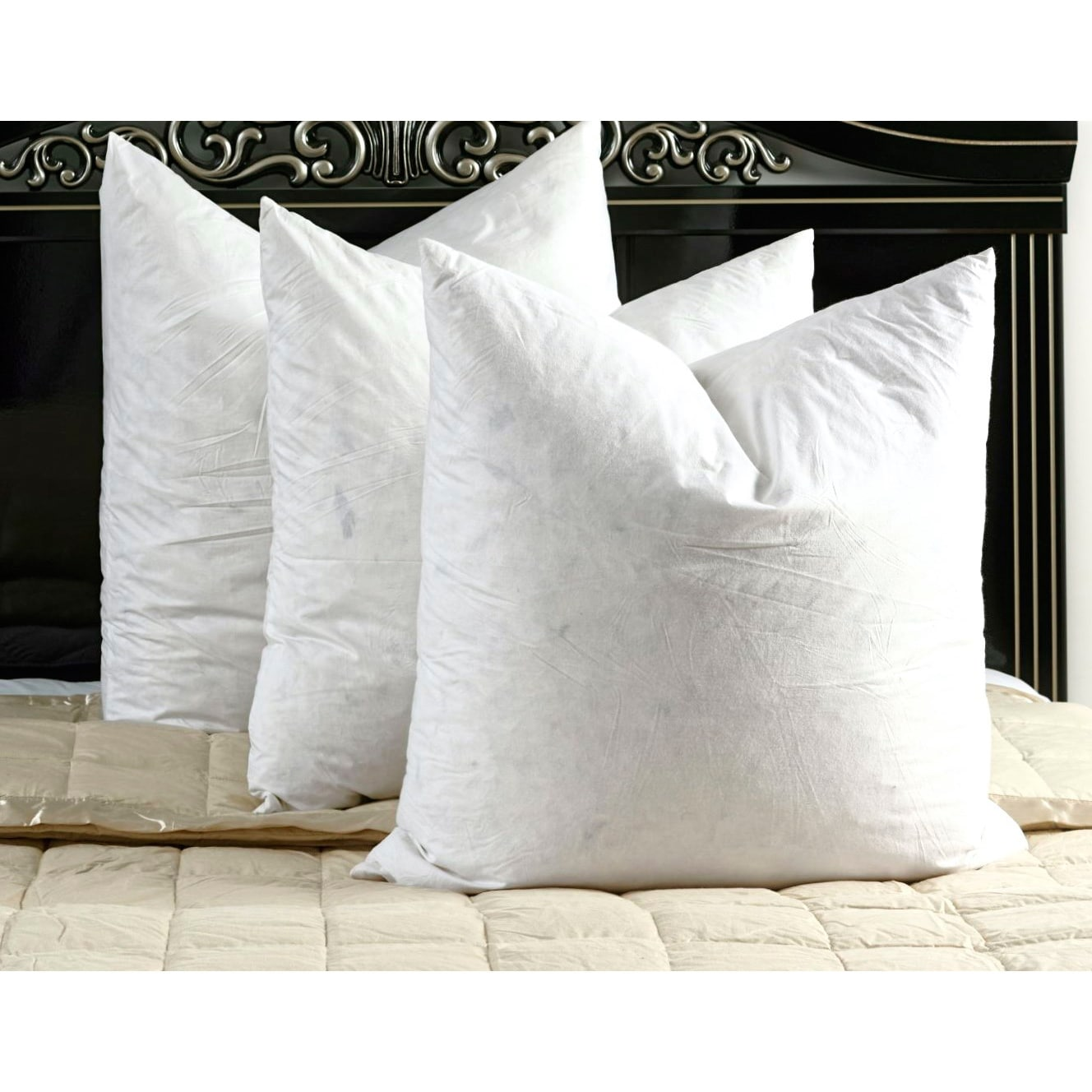 white cotton down and feather filled square euro pillows set of 2