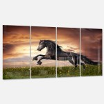 Designart Black Friesian Horse Gallop Animal Photography Metal Wall Art Overstock 13622393 23 X 23 Disc Of 23 Inch