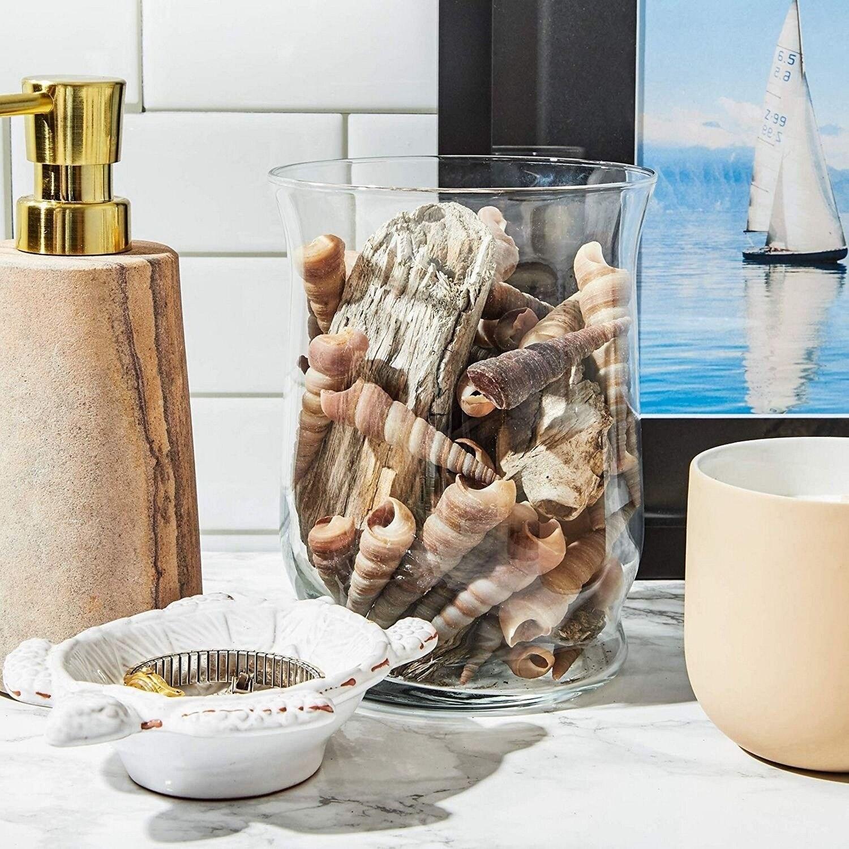 Turritella Sea Shells For Diy Crafts Beach Decor 40 Count