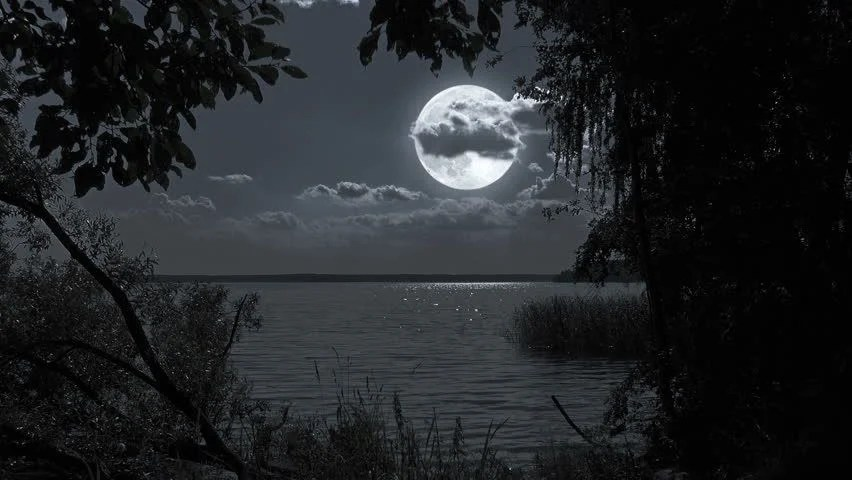 Image result for moon night