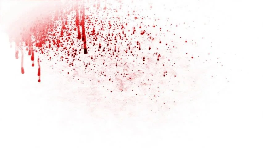 Blood Splash Against White Stock Footage Video 100