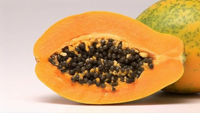 Image result for papaya hd images