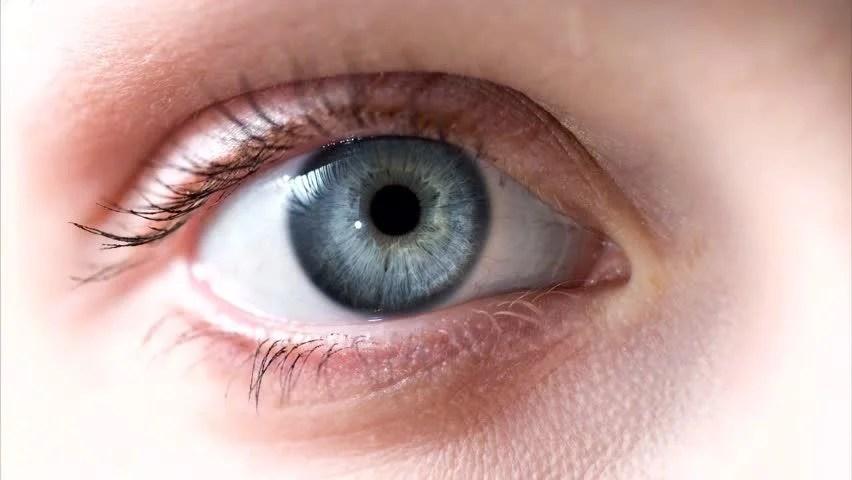 Inside Looks Eye Human