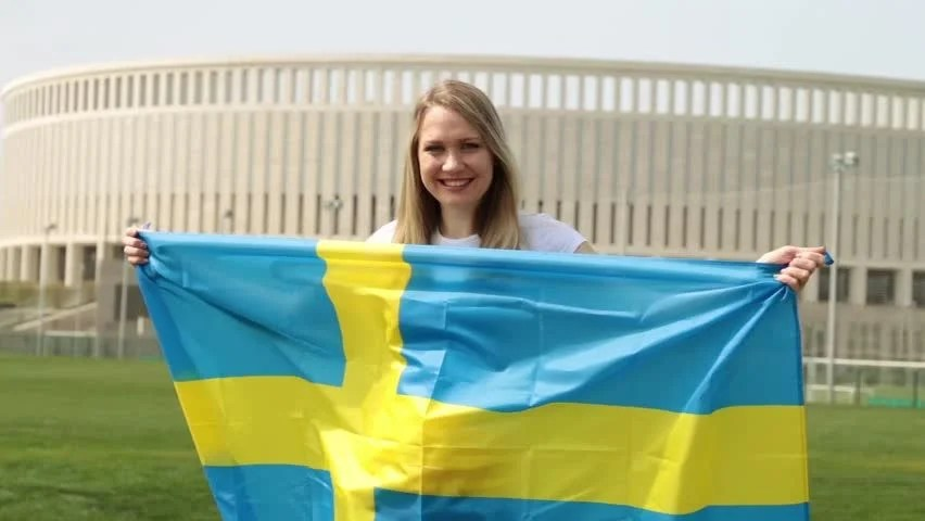 Image result for swedish girl with flag
