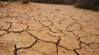 Image result for dry cracked soil