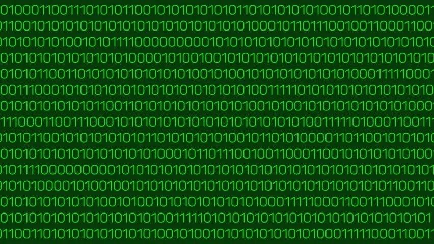 Security Hacking Web