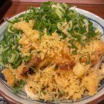 上野にオープンした『丸亀製麺』ネギと生姜でうどんが見えません❗️