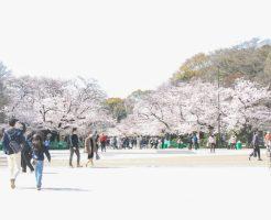 上野公園お花見20210327_01