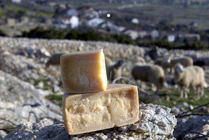 pag, cheese, tasteful, milk, sheeps, traditional, history, zadar, croatia, www.zadarvillas.com