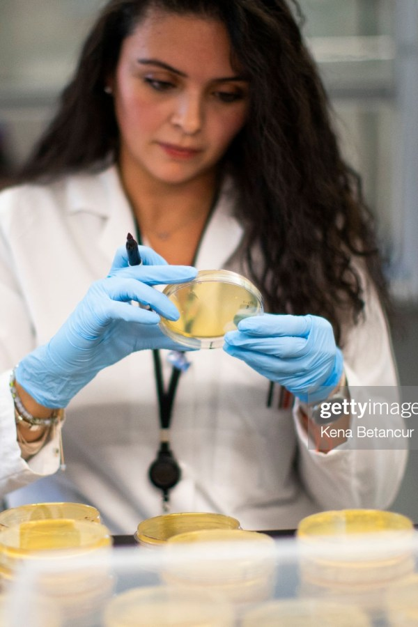 NUTLEY, NJ - FEBRUARY 28: A researcher works in a lab that is developing testing for the COVID-19 coronavirus at Hackensack Meridian Health Center for Discovery and Innovation on February 28, 2020 in Nutley, New Jersey. The facility develops novel therapies for some of the world's most difficult diseases. At least 53 countries have reported cases of infection. (Photo by Kena Betancur/Getty Images)