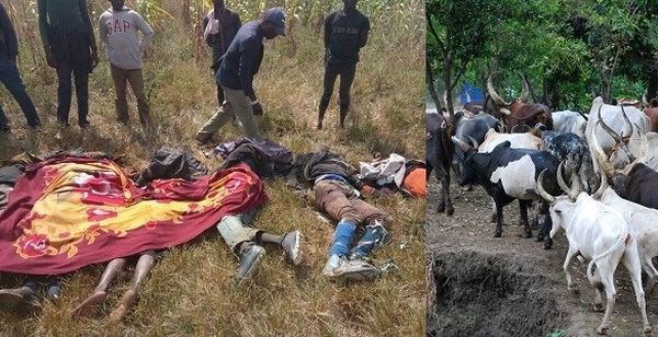 Herdsmen Killing of Herders