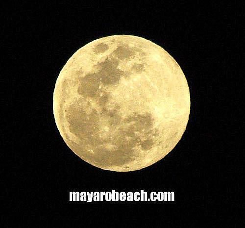 Full Moon - January 10th 2009