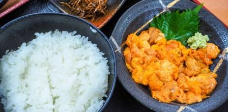 北海道禮文島⎮不吃海膽吃什麼?Atoi馬糞海膽丼