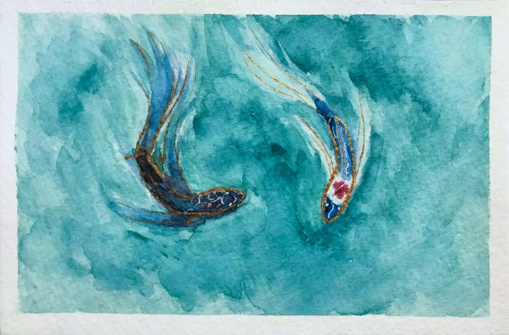 Reflections - A watercolor painting of two bettafish.