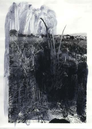 Drawing on photographic paper