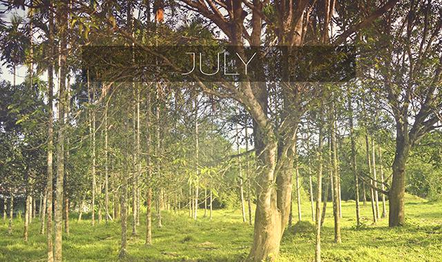July - Fashion & Lifestyle
