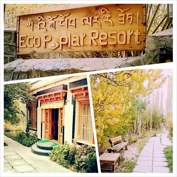 Eco Poplar Resort, Leh - Looking Back { October }