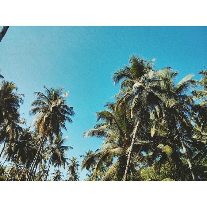 instaTravel | Road Trip | India | www.akanksharedhu.com | Morjim Goa