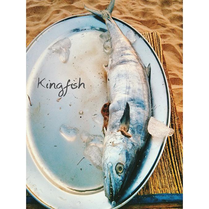 instaTravel | Road Trip | India | www.akanksharedhu.com | Kingfish Goa