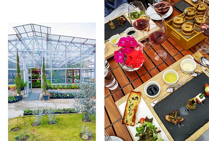 JW Marriott Mussoorie | Akanksha Redhu | Travel | greenhouse exterior and appetizers combo
