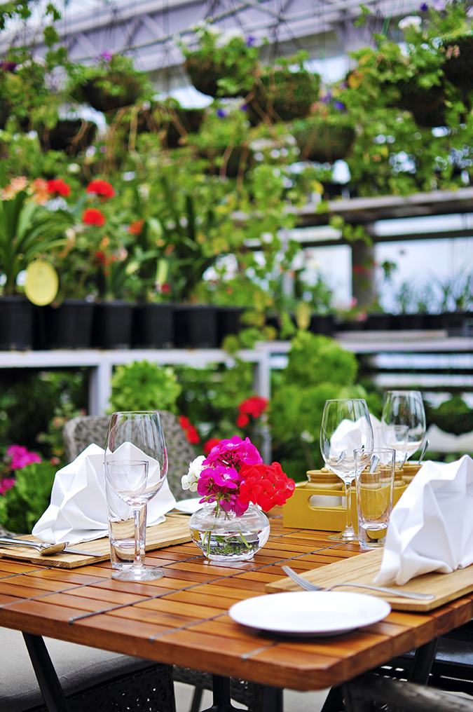 JW Marriott Mussoorie | Akanksha Redhu | Travel | greenhouse lunch camera long