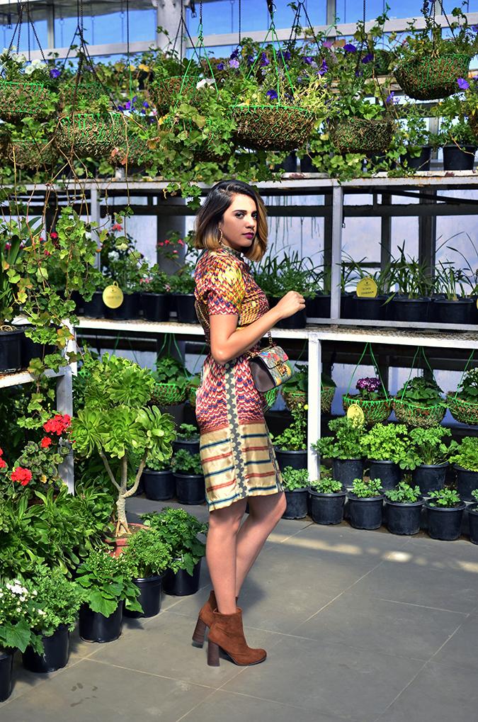 The Greenhouse | Gucci | Akanksha Redhu | full far side
