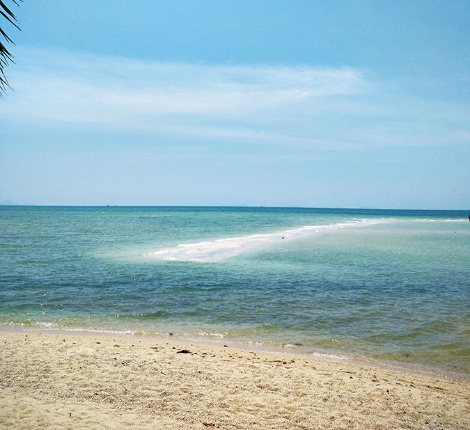 Coconut Beach | Koh Samui | Akanksha Redhu | #RedhuxKohSamui | sea