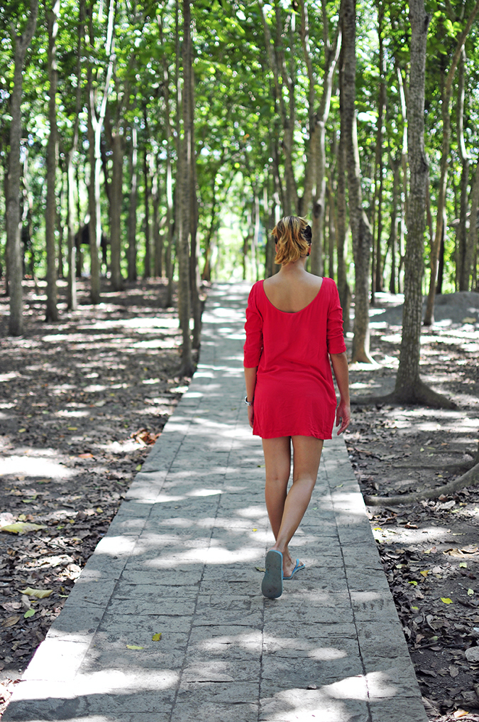 Sacred Monkey Forest Sanctuary - Ubud | Akanksha Redhu | path through trees full back