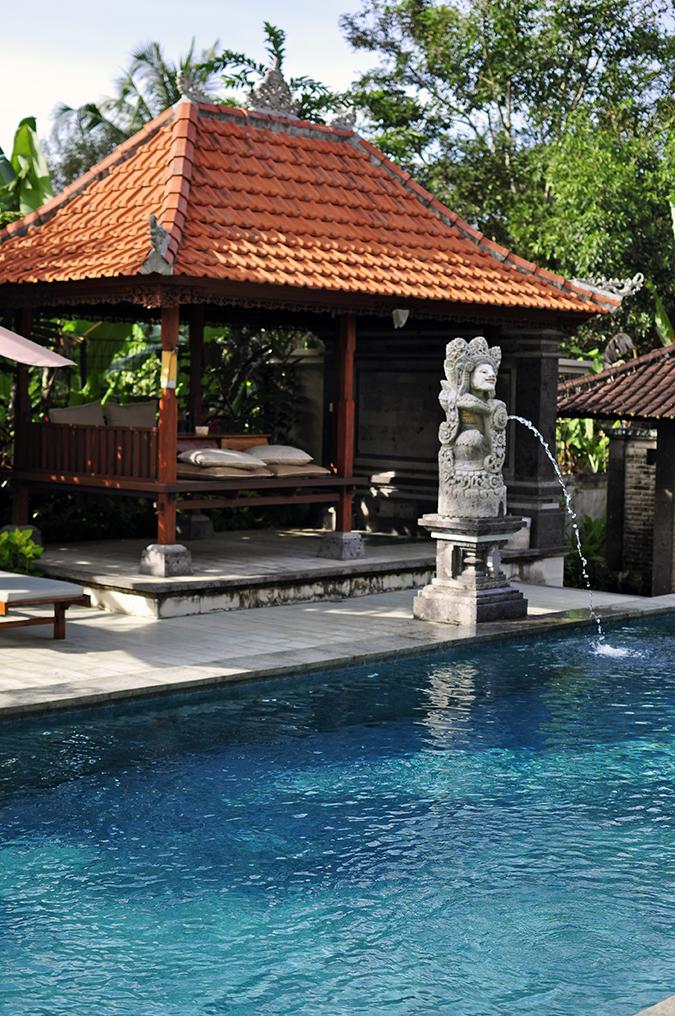 Bali | Akanksha Redhu | pool