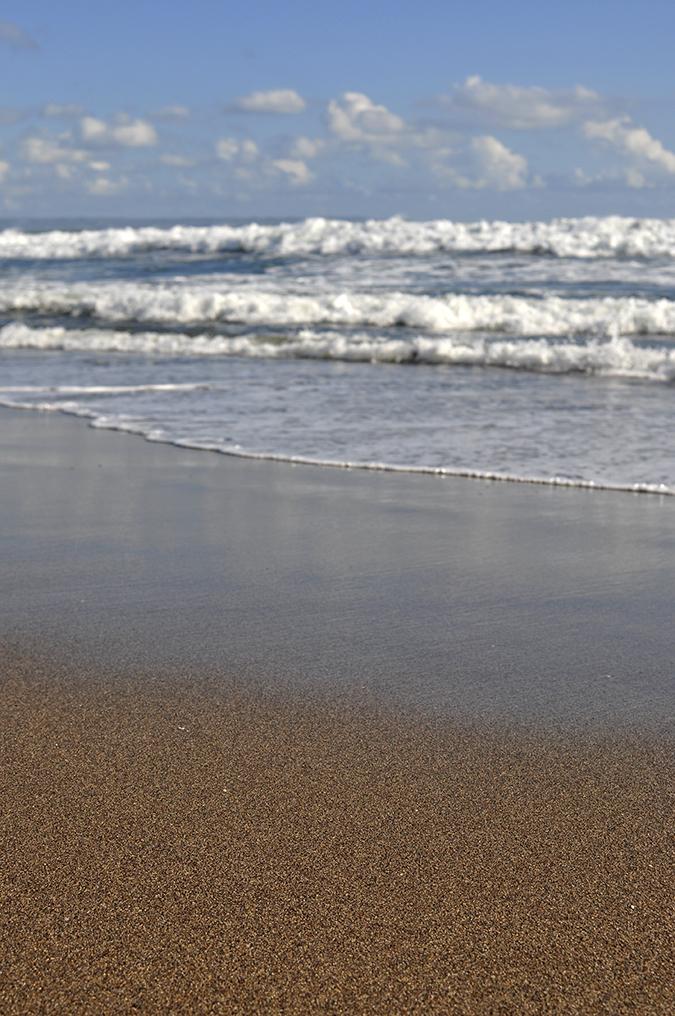 Berawa Beach | Bali | Akanksha Redhu | focus on sand