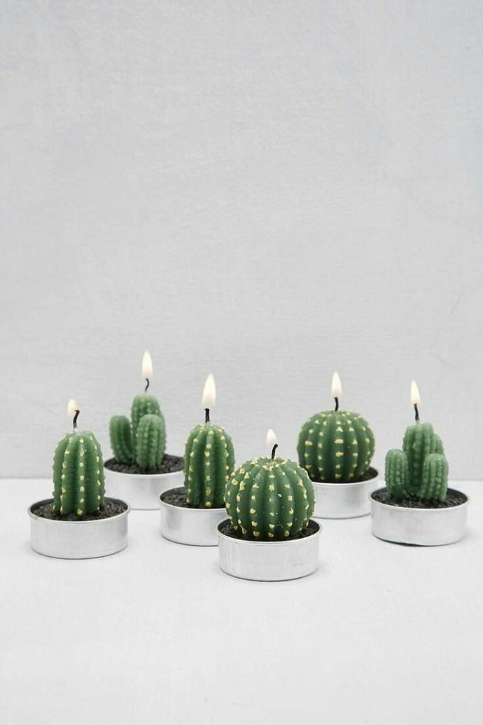 Home Inspo | Akanksha Redhu | cactus candles