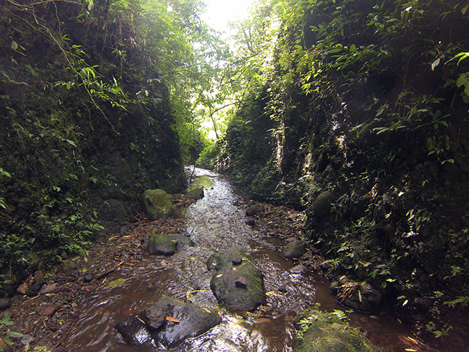 Canyoning in Bali | Akanksha Redhu | walking steam path shot