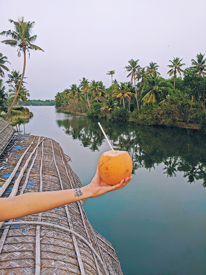 Kerala Backwaters | Vayalar | holding coconut