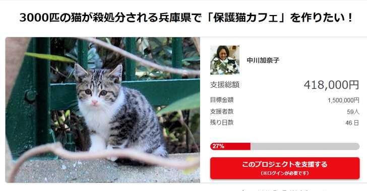 保護猫カフェOGP