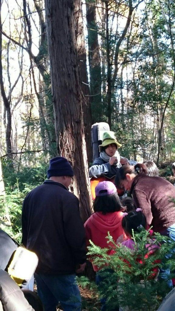 森の散策1
