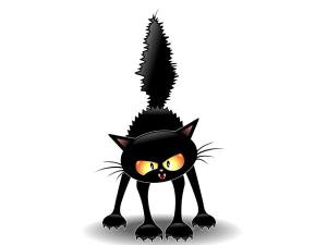 600x450xangry-cat.jpg.pagespeed.ic.HDkWIaENKlMOE3muaktD